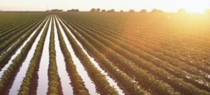 Πρόσκληση συμμετοχής σε πρόγραμμα ενίσχυσης αγροτικού τομέα