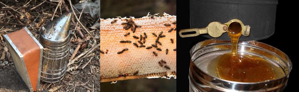 Βελτίωση των συνθηκών παραγωγής και εμπορίας των προϊόντων της μελισσοκομίας για το έτος 2015. Υποβολή αιτήσεων από τους ενδιαφερόμενους