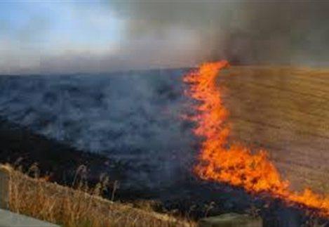 Πρόληψη και αντιμετώπιση πυρκαγιών σε δασικές και αγροτικές εκτάσεις