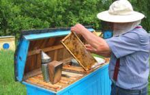 Θεώρηση μελισσοκομικών βιβλιαρίων. Π.Ε. Κιλκίς