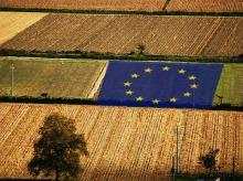 Ενημερωτικές συναντήσεις με τους παραγωγούς για τη νέα Κοινή Αγροτική Πολιτική (νέα ΚΑΠ). Π.Ε. Σερρών