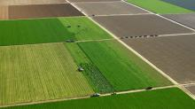 Έναρξη της υποβολής δηλώσεων εφαρμογής του 2015 για γεωργοπεριβαλλοντικά από 10 Φεβρουαρίου