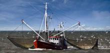 Τρίτη πρόσκληση εκδήλωσης ενδιαφέροντος του Επιχειρησιακού Προγράμματος Αλιείας 2007-2013