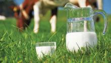 Τι ορίζει ο κοινοτικός κανονισμός για παραδόσεις στο γάλα
